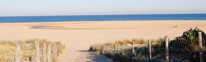Camping Landes plage