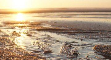 location mobil-home-plage-biscarrosse